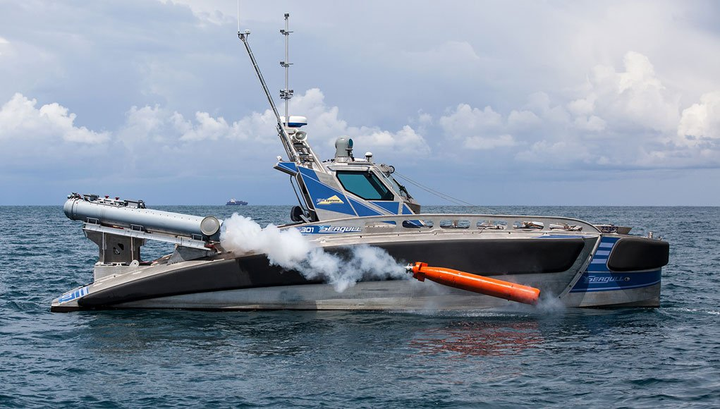 seagull_torpedo1021