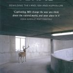 Feral : rewilding the land, sea and human life