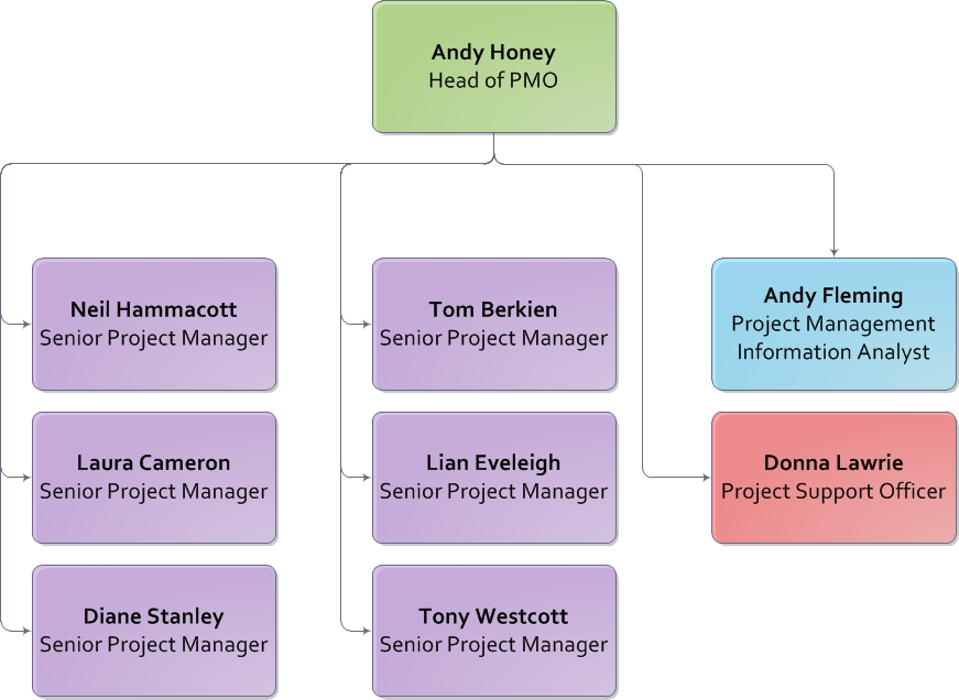 24 original project management office organizational structure - Head of project management office ...